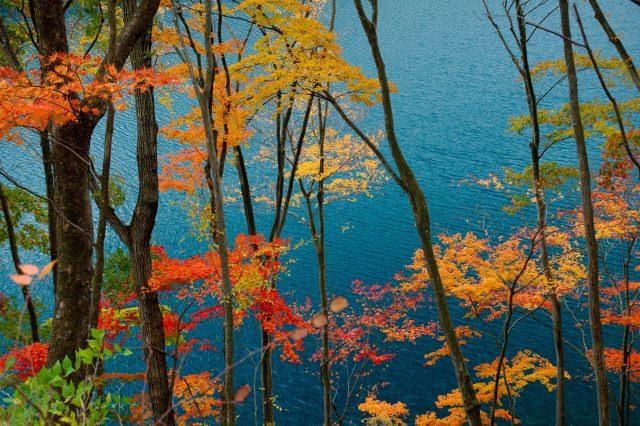 中之条で必ず見たい四万湖の絶景